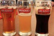 Дегустируем пиво Крушовице