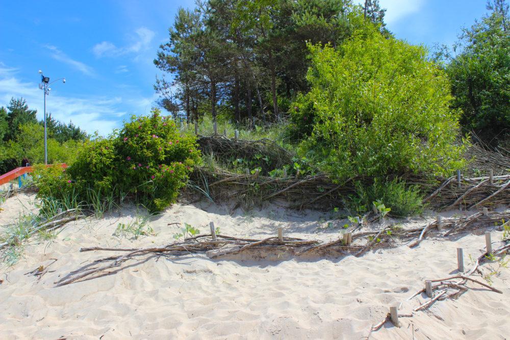 Паланга песок